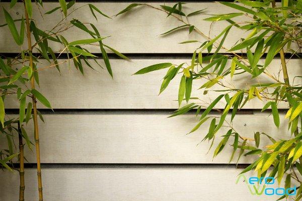 Fehér kerítés bambusszal